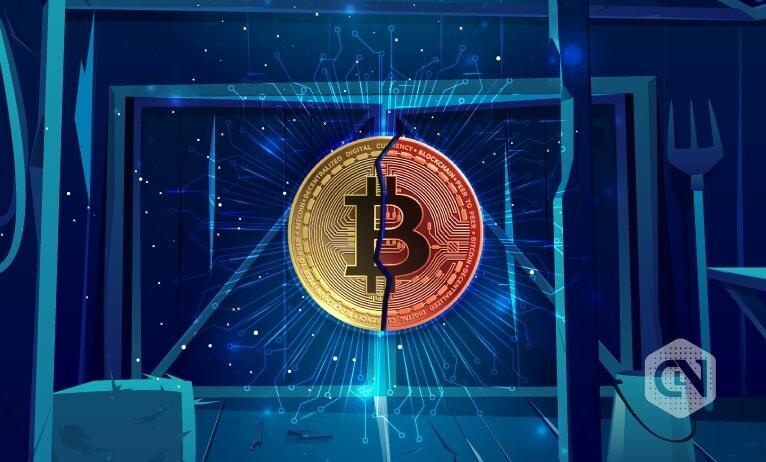 bitcoin halving price up